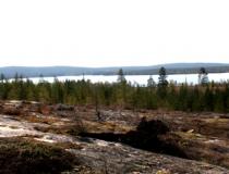 Torramokivalo, Finland